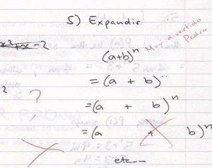 Pérola Matemática